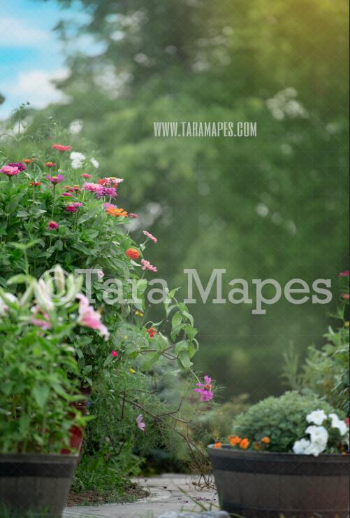 Garden Walkway - Flower Path - Digital Background-  Nature Digital Backdrop