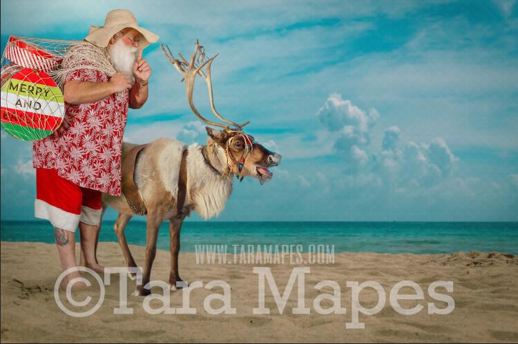 Beach Santa Digital Background - Beach Santa with Reindeer on Beach - Warm Christmas Beach - Beach Christmas Holiday Digital Background Backdrop