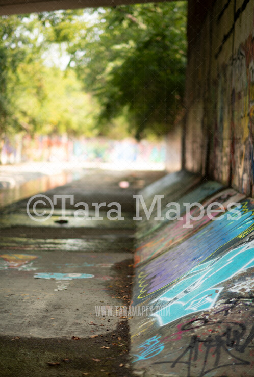 Graffiti Digital Background - Graffiti Walkway - JPG file - Photoshop Digital Background / Backdrop