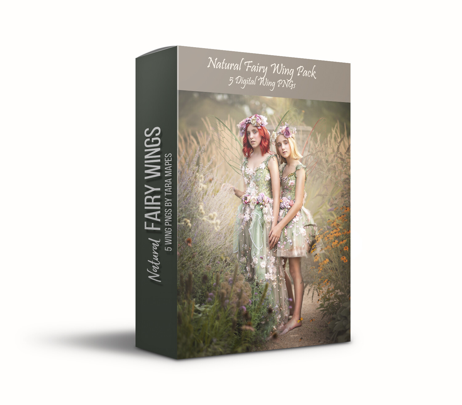 Natural Fairy Wing Overlays - 5 Natural Fairy Wing PNGs - Fairy Wing Overlays