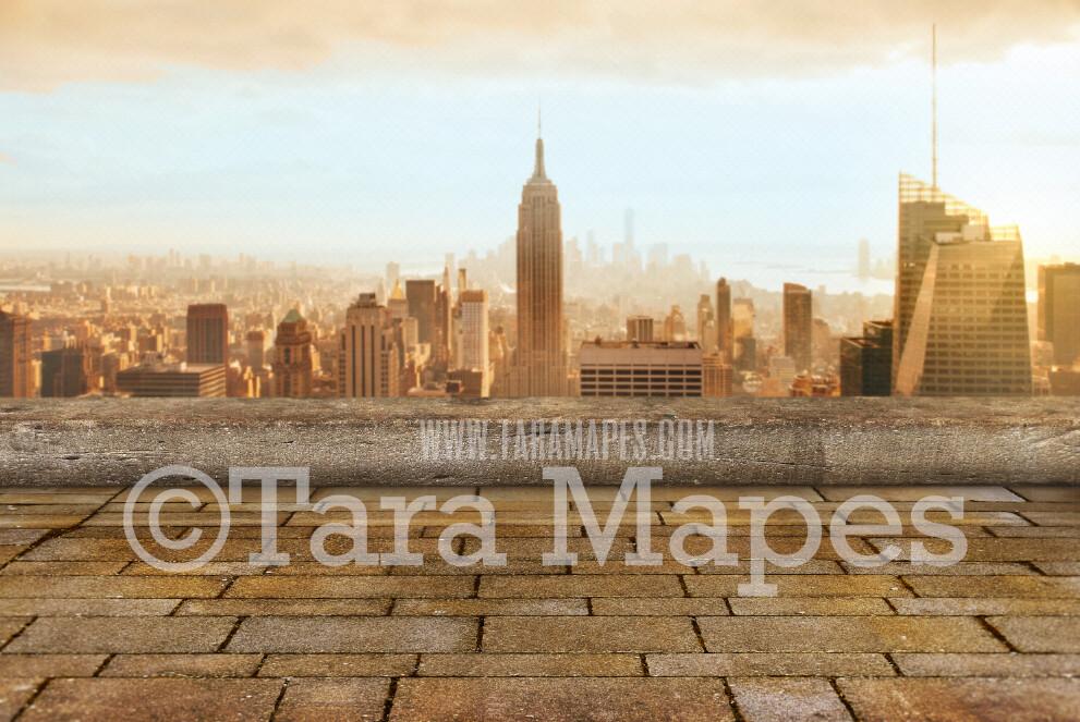 Superhero Digital Backdrop - Building Rooftop New York City - Superhero Roof over City - Superhero City Digital Background