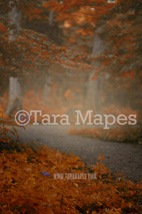Autumn Digital Backdrop - Dreamy Nature Autumn Path in Forest with Orange Leaves - Digital Background by Tara Mapes