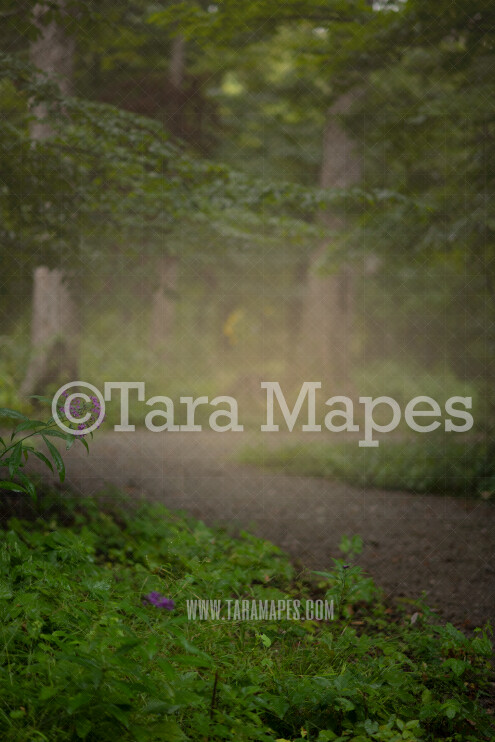 Spring Digital Backdrop - Dreamy Nature Spring Path in Forest Creamy - Digital Background by Tara Mapes