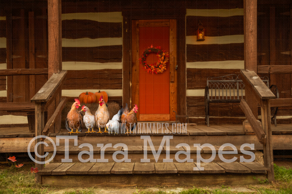 Fall Cabin with Chickens on Porch- Fall Barn - Barn in Autumn - Hay and Pumpkins on Cabin Stairs- Digital Background by Tara Mapes