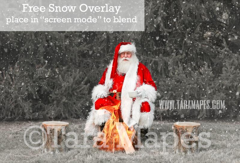 Santa Digital Backdrop - Santa Roasting Marshmallows by Pine Trees - Free Snow Overlay Included - Santa Christmas Digital Backdrop by Tara Mapes