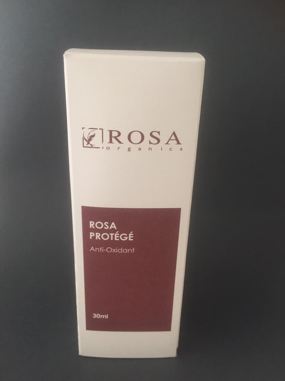 Rosa Protégé - Anti Oxidant