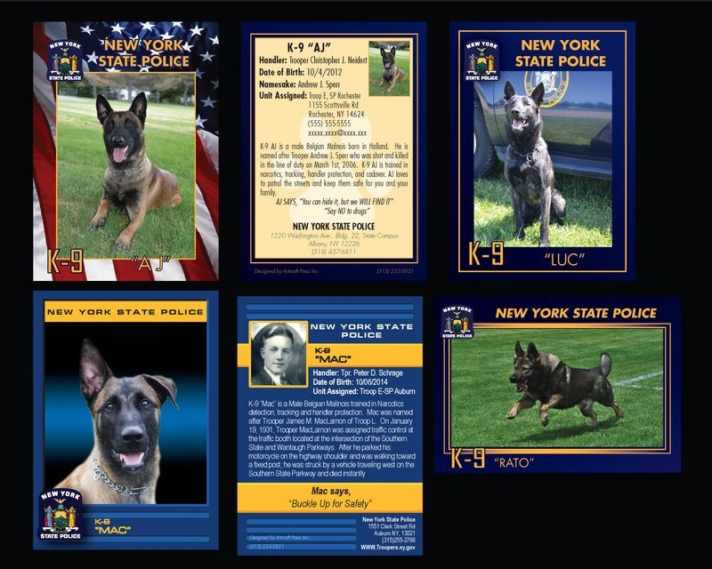 K9 Trading Cards