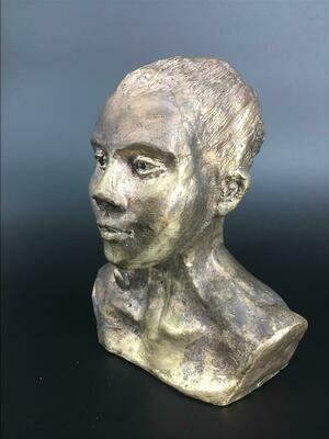 Danaid Hyparete - Bronze