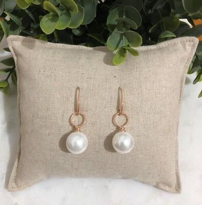 Earrings - 242ERG