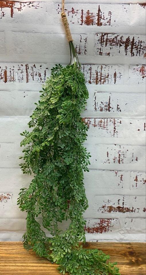 Hanging Bush