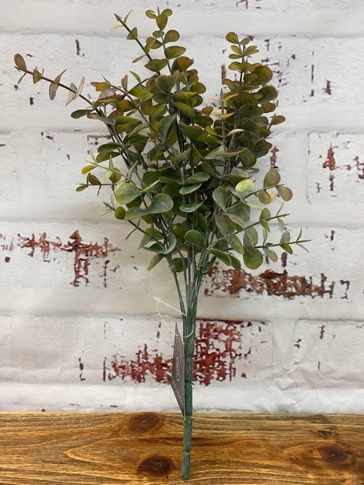 Eucalyptus Bush O/G