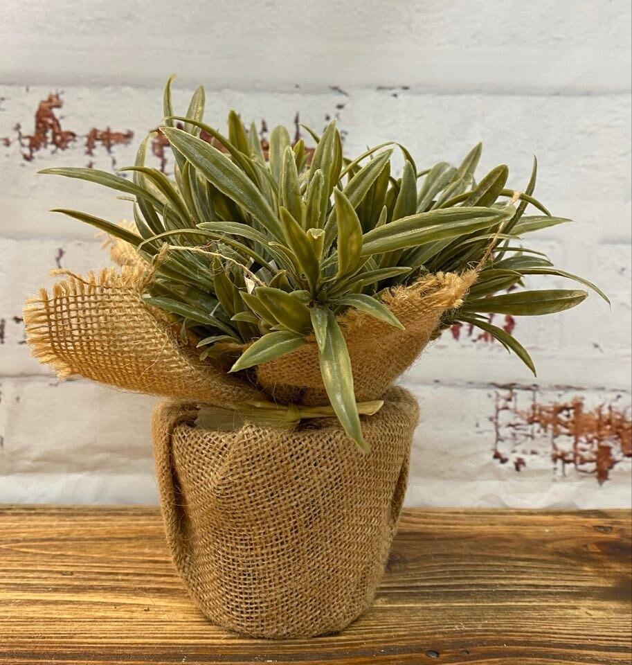 Calla Lily Leaf Bush Pot 18cm