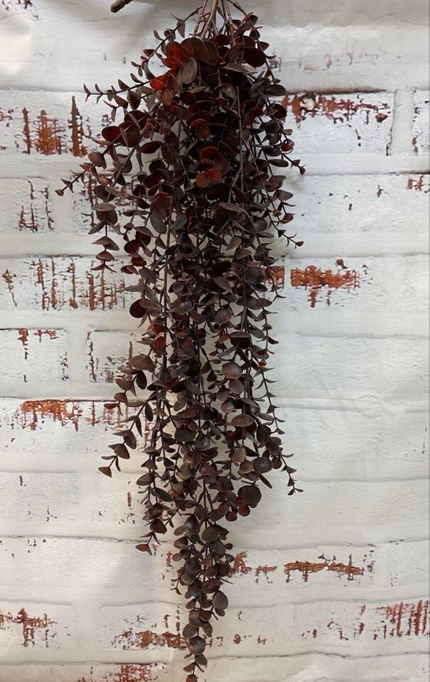 Eucalyptus Hanging Bush - Burgundy