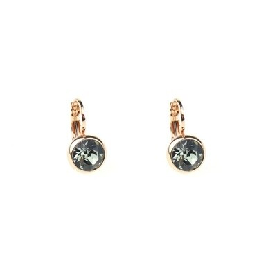 Earrings E01353BD