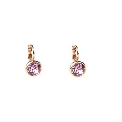 Earrings E01353R