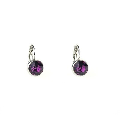 Earrings E01306V