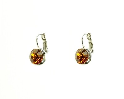 Earrings E01306T