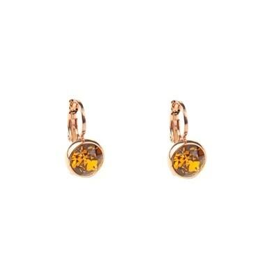 Earrings E01353T