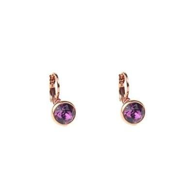 Earrings E01353V