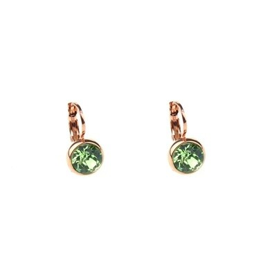 Earrings E01353P