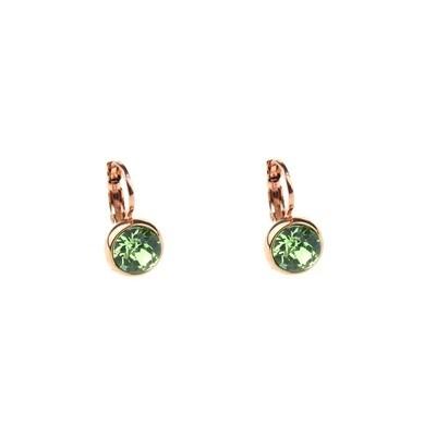 Earrings E01353P