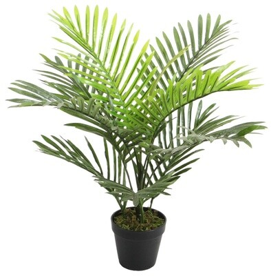 Mini Palm 9 Leaf Green 60cm