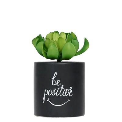 Pot Plant Positive