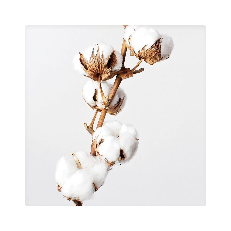 Ceramic Coaster Dusk Cotton