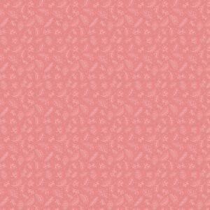 Cherished Moments - Dashwood/Pink