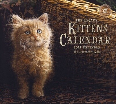 2021 Kittens Calendar