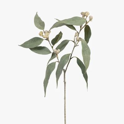 Eucalyptus Tetragona Spray 64cm
