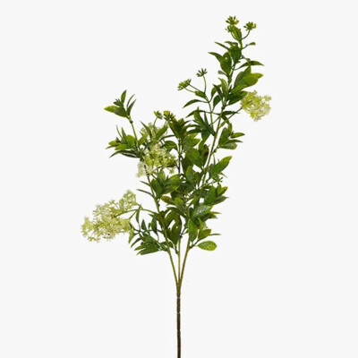 Queen Annes Seed Spray 69cm
