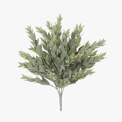 Ruscus Bush - Grey Green 38cm