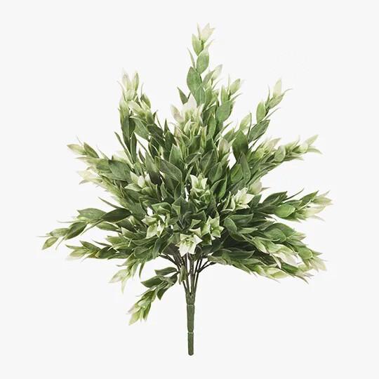 Ruscus Bush - Grey White 40cm