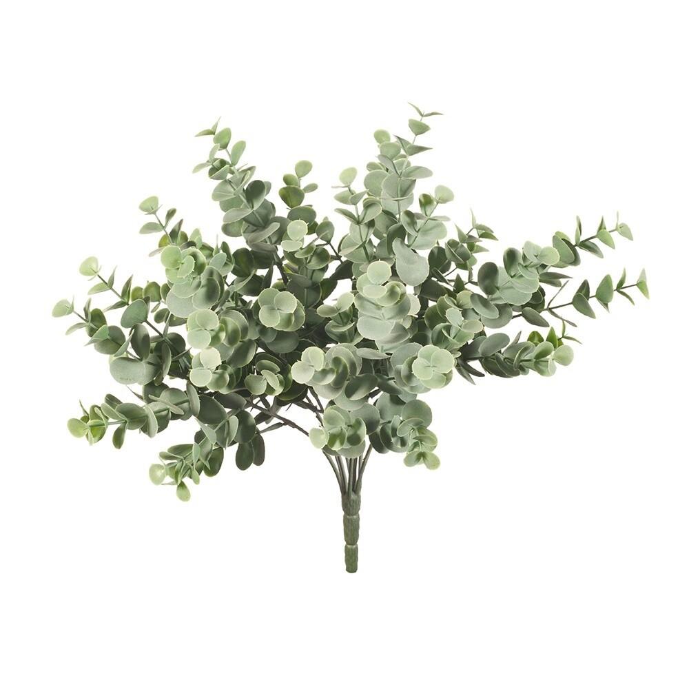 Eucalyptus Bush Grey Green