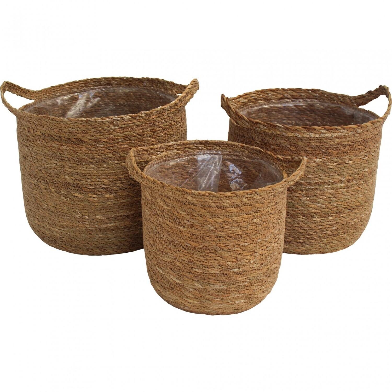 Basket Handle Planter - Small