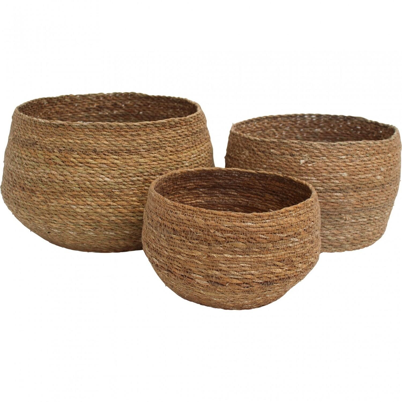 Basket Patil - Large