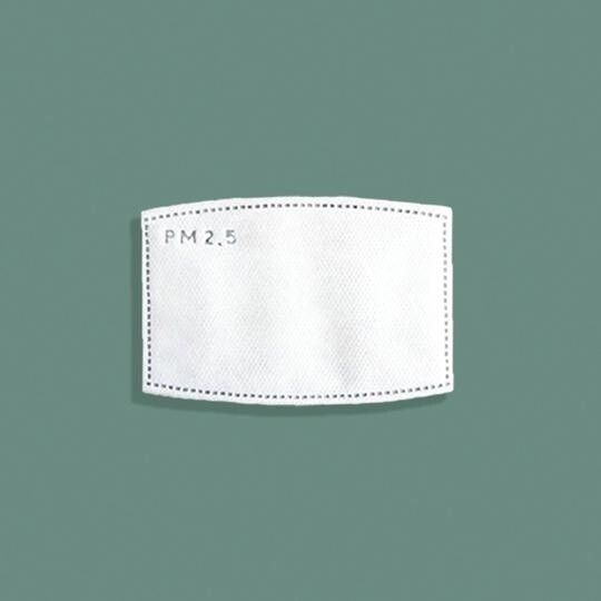 Mask Replacement Filters Pack 10