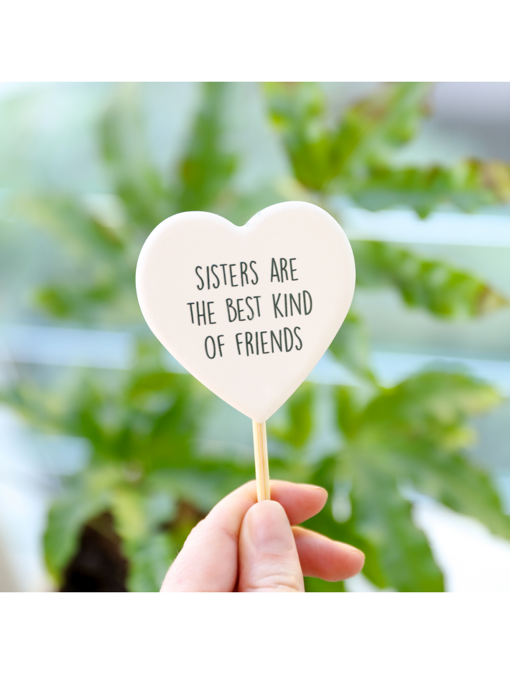 Plant Message Sisters