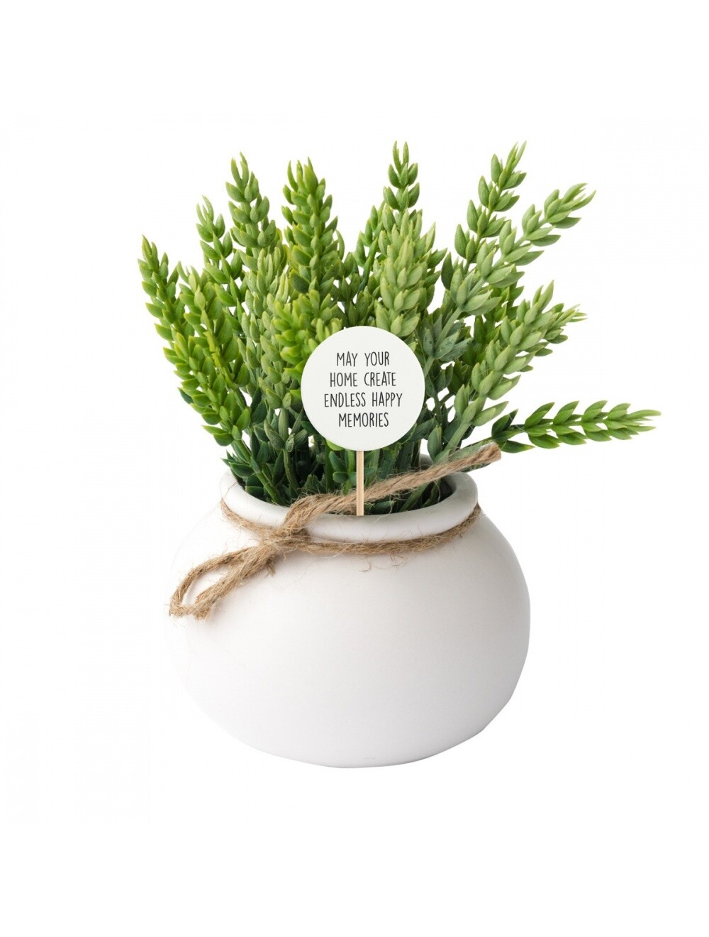 Plant Message Home