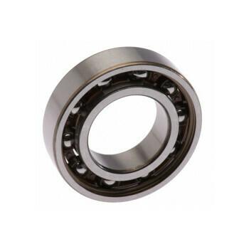 Cuscinetto SNR 6005 G15 C4