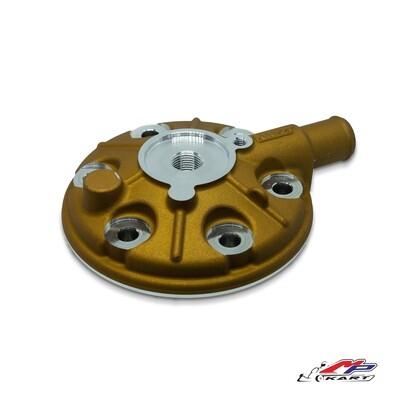 Testa motore Rok GP / Junior