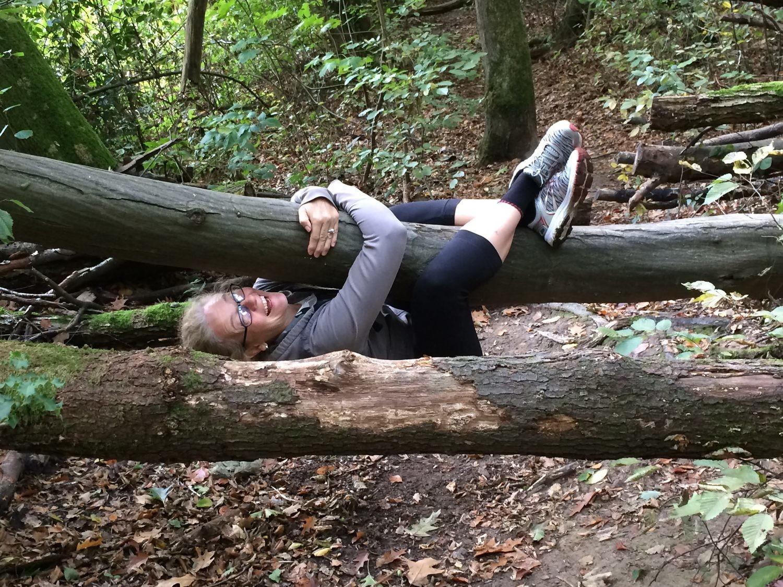 Neue Geh-Danken im Wald