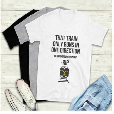 Train goes in one direction