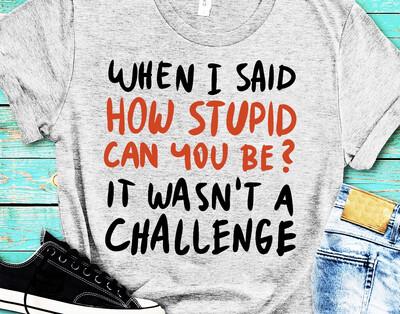 Stupid Challenge