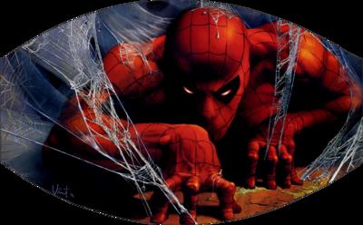 Dark Spiderman Face Mask