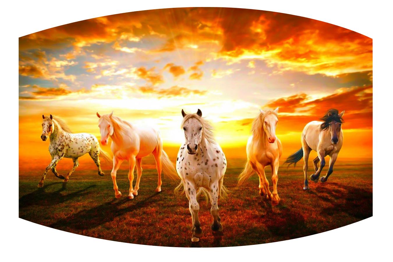 Sunset Horses Face Mask