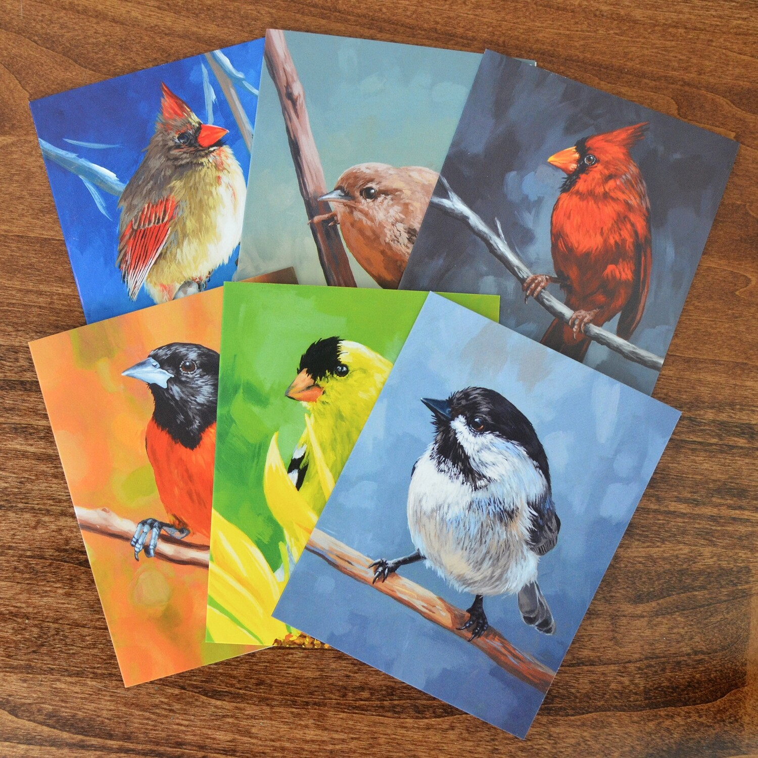 Bird Note Cards - Mix Pack