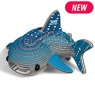 Whale Shark EUGY2
