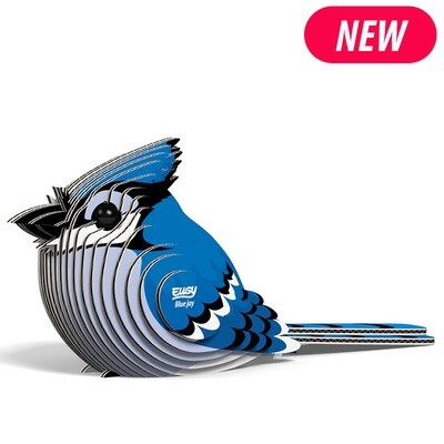 Blue Jay EUGY2